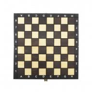 xadrez magnético Brown